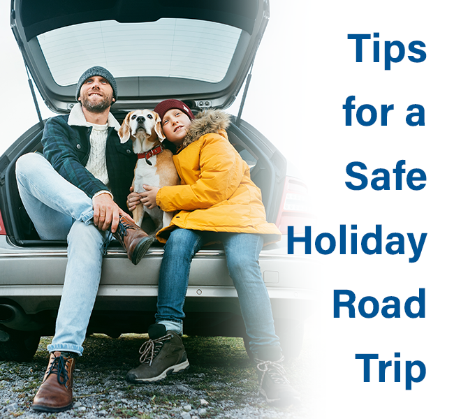 DSI-Safe-Holiday-Road-Trip-